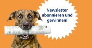 bvvd_enke-newsletter_newsfeedpost_1200x628